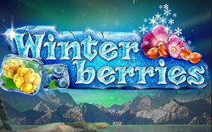 Winterberries - Rizk Casino