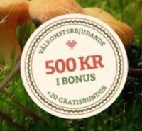 Casinostugan bonus ny