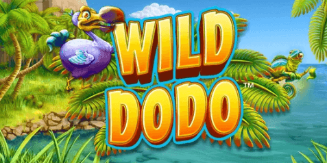 NYX software Wild dodo