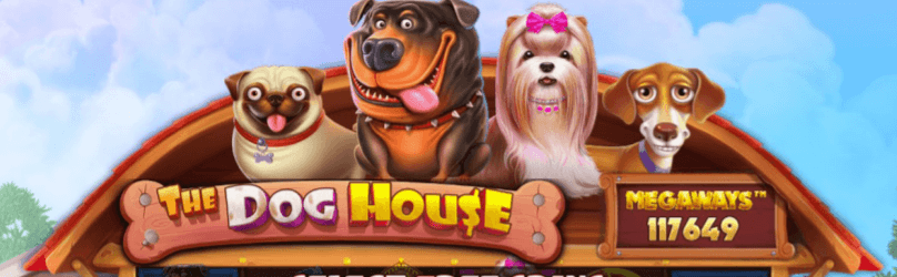 The dog house megaways 117649